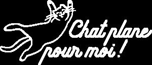 Chat Plane Pour Moi